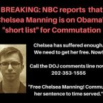 Take Action to Free Chelsea Manning Now!